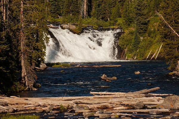 Yellowstone and Grand Teton Favorites