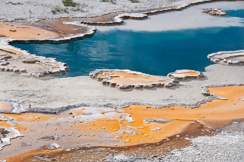 Yellowstone, bacterial mats