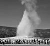 2013-08-19 Yellowstone-Tetons232