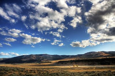 Lamar Valley, Yellowstone National Park  Print size 5 x 7 $14.00 USD 8 x 10 $20.00 USD 8 x 12 $20.00 USD 11 x 14 $28.00 USD 12 x 18 $35.00 USD 16 x 20 $50.00 USD