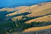 2013-08-1819 Yellowstone103