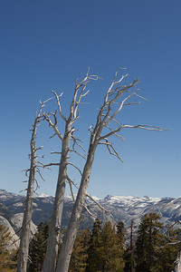 Yosemite 04.18