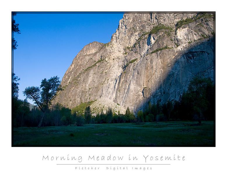 Meadow_5913_FW