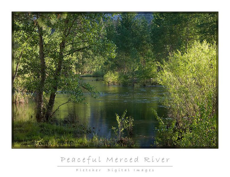 Peaceful_5979_FW