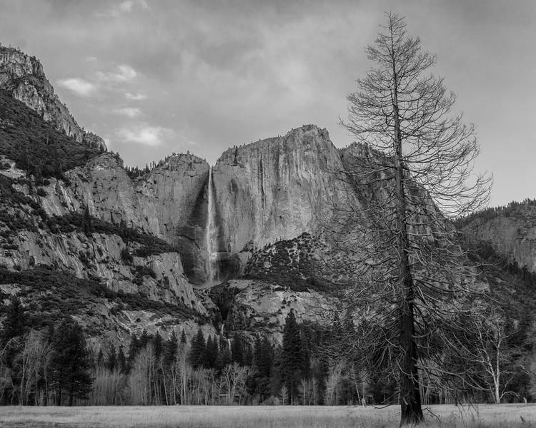 Yosemite Feb 2015