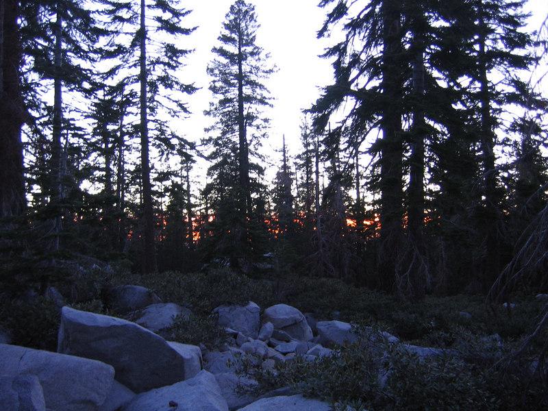 Sunset through the woods.