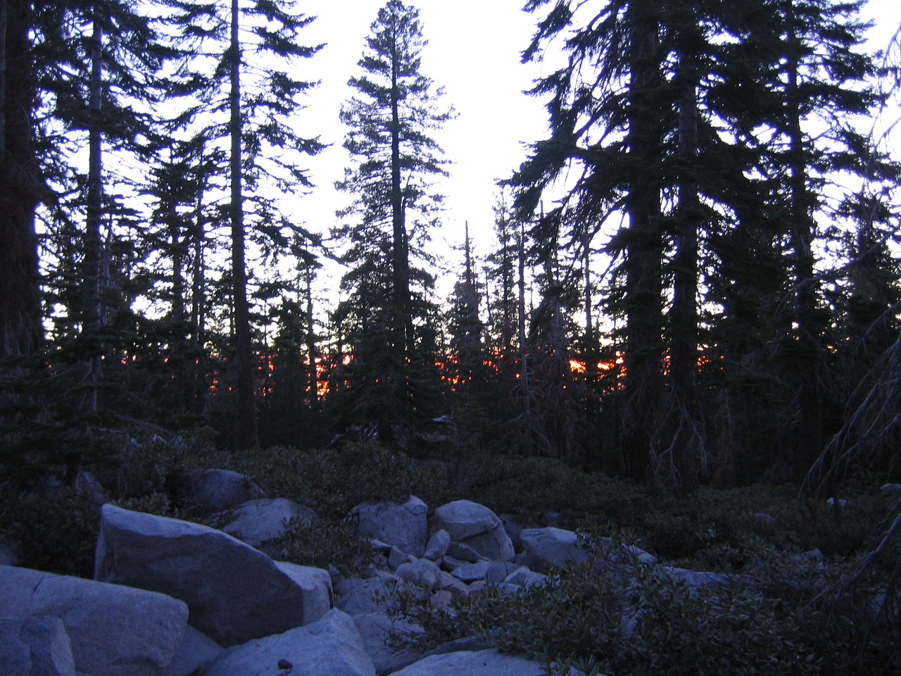 Sunset through the woods.