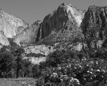 Yosemite Falls from Cook's Meadow.