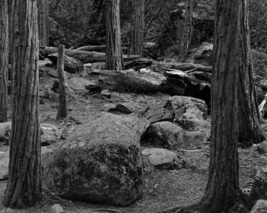 Near the base of Bridalveil Fall.