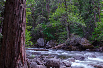 The Merced River near the Happy Isles Nature Center.
