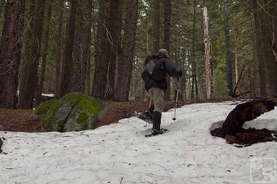 Snowshoeing in Yosemite National Park