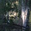 20060710-CRW_4230
