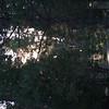 20060710-CRW_4228