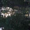 20060710-CRW_4227