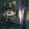 20060710-CRW_4229