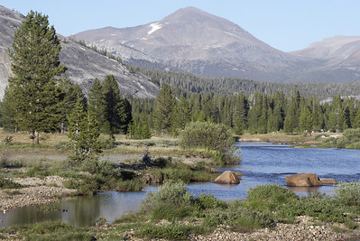 More of Tuolumne River snaking its way through the meadow.