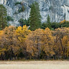 080816_Yosemite-2008_038
