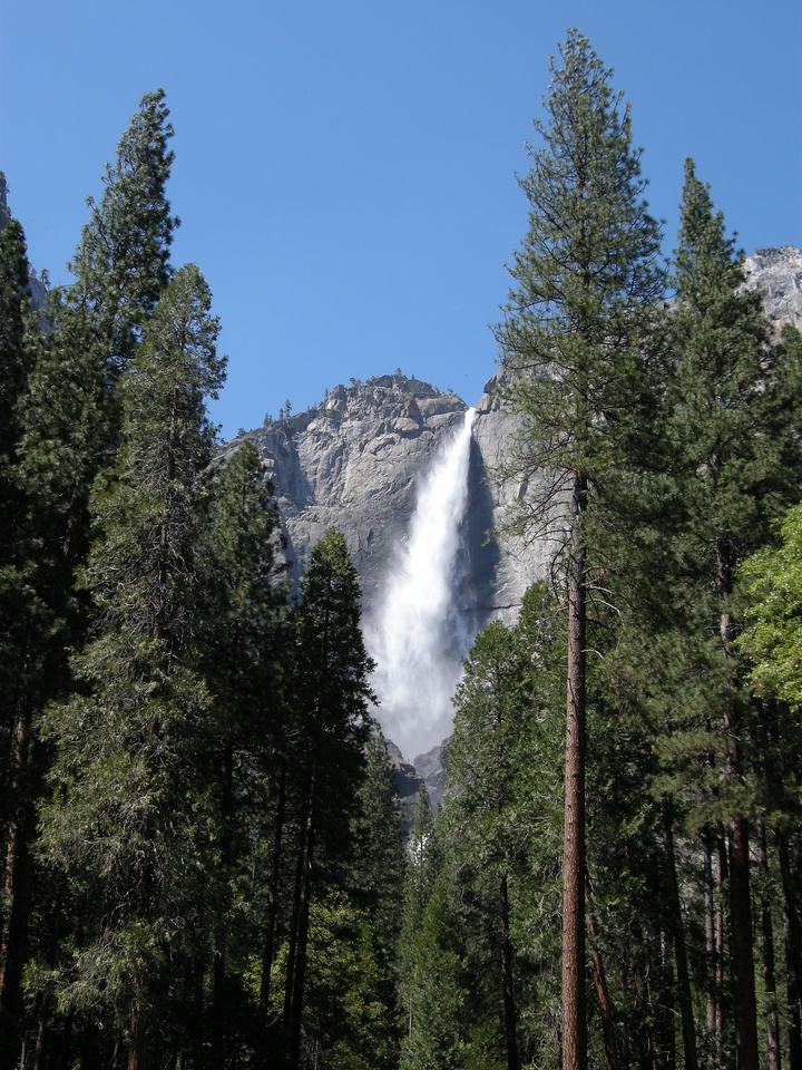 Upper Yosemite Fall. There's a ledge that the water hits just a little ways down that projects the water out away from the cliff face and creates the feathery appearance lower down.
