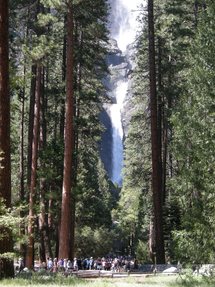 Yosemite Falls, with the lower fall featured.