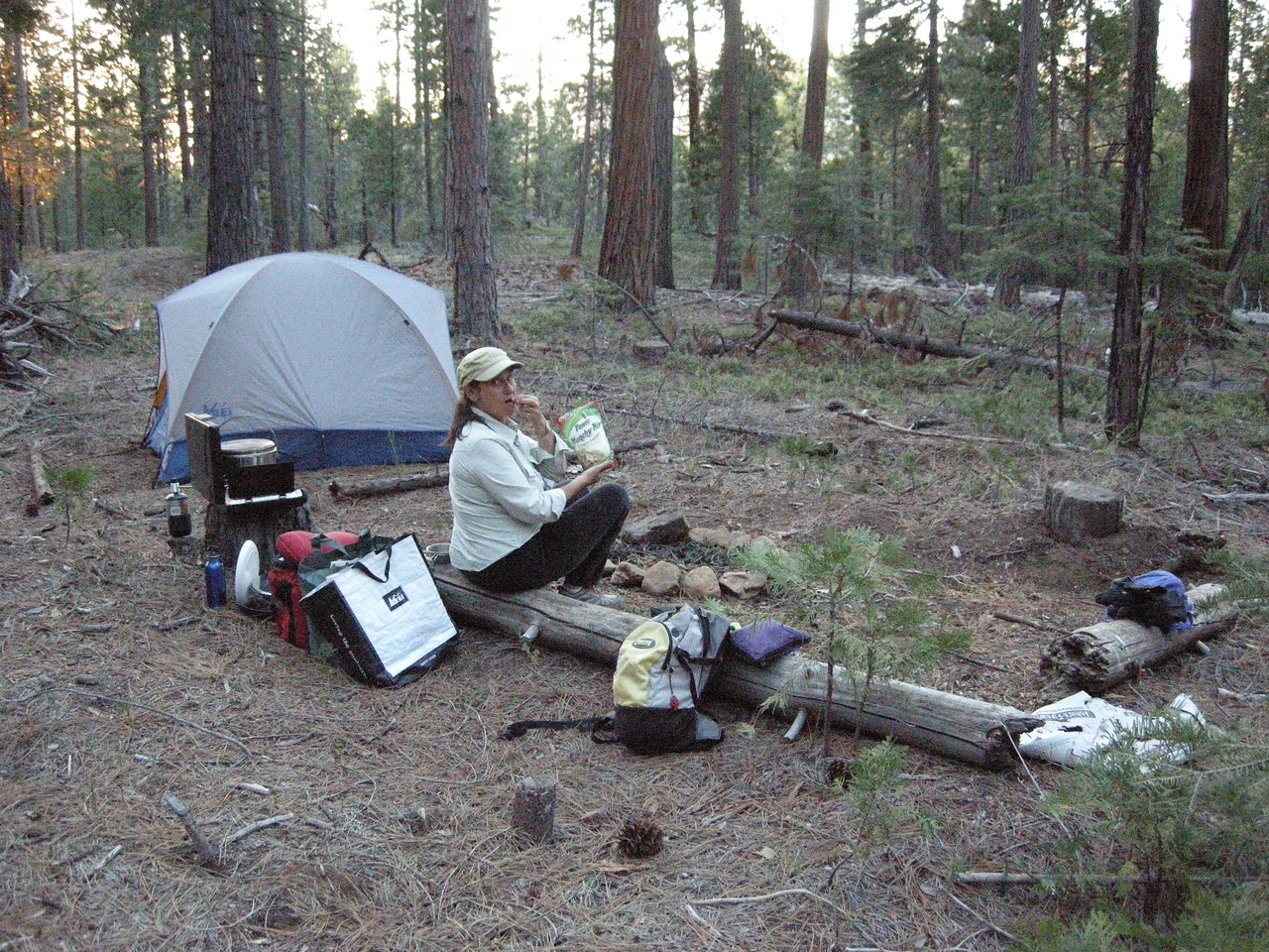 Dry-camping in the National Forest just outside Yosemite National Park along the Evergreen Road near Mather.