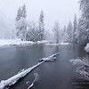 The Merced River in Yosemie National Park during a winter morning snowstorm.