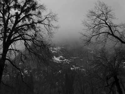 Taken in the parking lot for Bridal Veil Falls.  I thought the trees kind of gave it an eerie feeling.