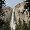Yosemite  (38)