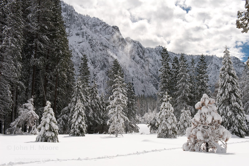 A lone path through a snowy field after a winter storm in Yosemite Valley