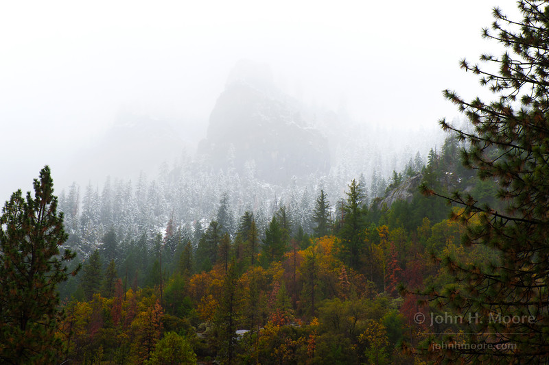 Snowline at Yosemite National Park above the Wawona Tunnel.  First winter storm of 2014-15.  Snow fell to about 5,500 feet.