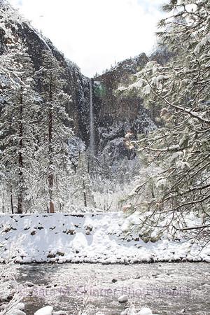 Yosemite  (48)