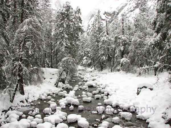 Yosemite  (26)