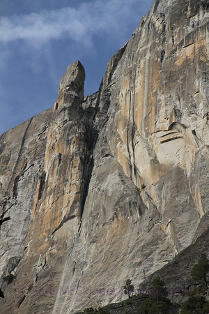 Yosemite  (41)