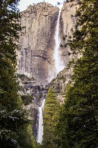 Yosemite Photo Shoot