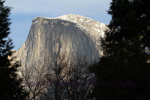 Yosemite  (46)