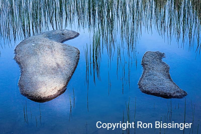 Tuolumne Pond