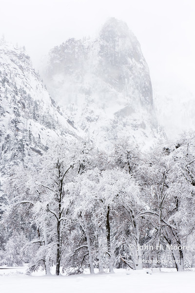 Sentinel Rock fades from view behind falling snow in Yosemite Valley