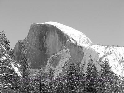Yosemite  (36)