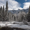 Looking across the Merced River at snowy trees in Yosemite National Park