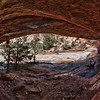 Clear Creek side canyon / Zion Park<br /> cave view