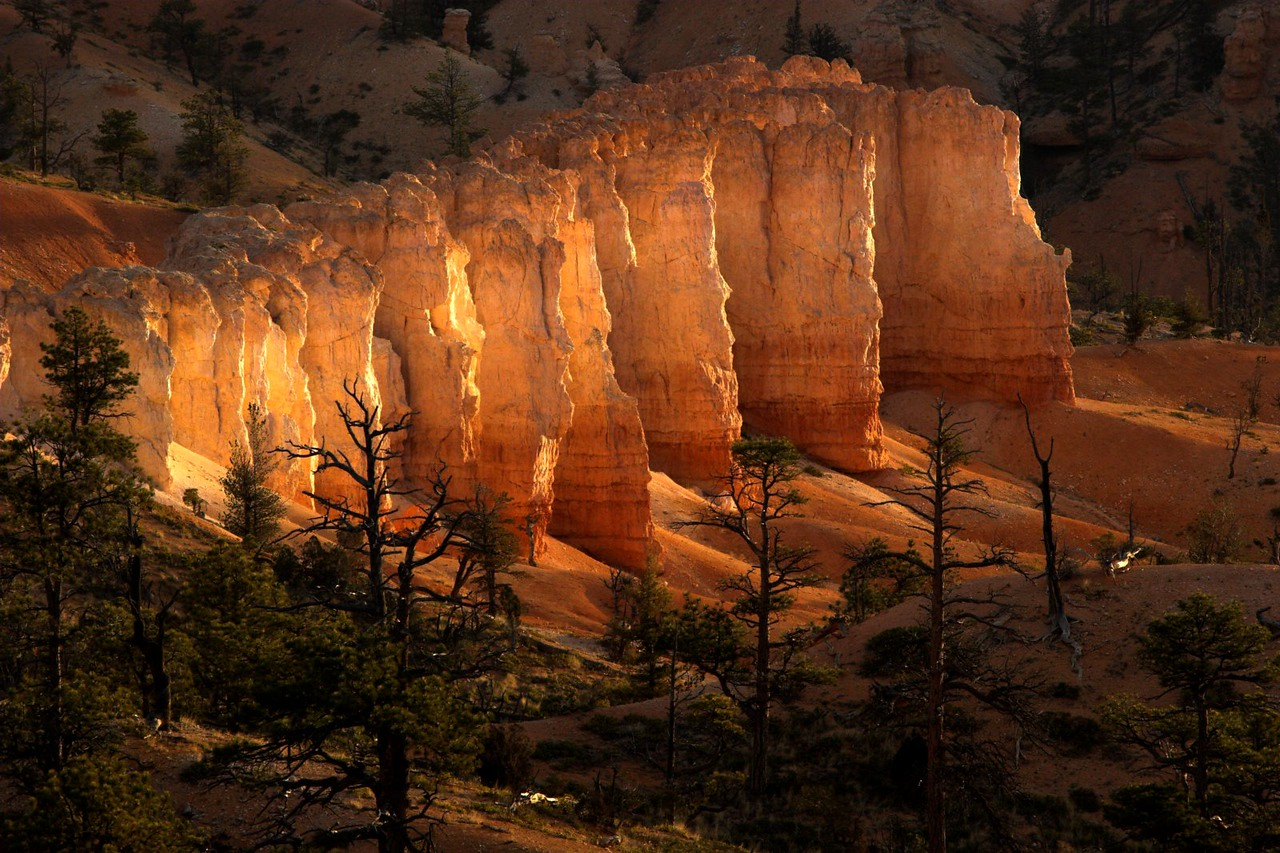 """Morning light, Bryce Canyon National Park. Winner - """"Parks Category"""" in the 2008 National Geographic Great Outdoors Photo Contest."""