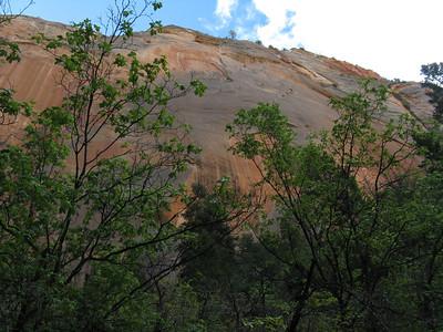 Observation Point Hike