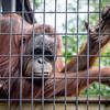 Milwaukee Zoo - 4 Aug 2013