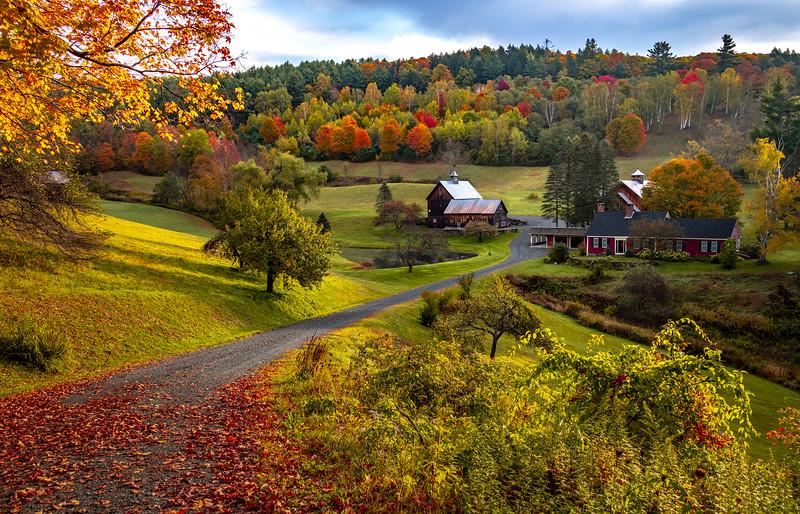 An Autumn Scene at Sleepy Hollow Farm, VT 10/10/19