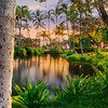 Joshua D Weiss Fine Art Photography of Na Loko L'a O Kalahuipua Fish Ponds on the Big Island of Hawaii