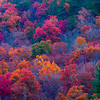 Cataloochee Valley in the Great Smoky Mountains National Park