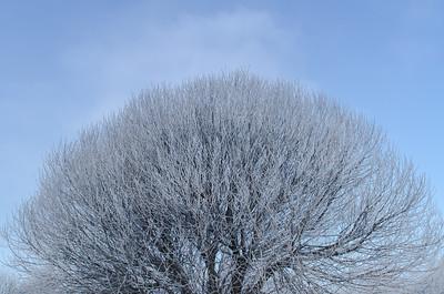 frosty ball