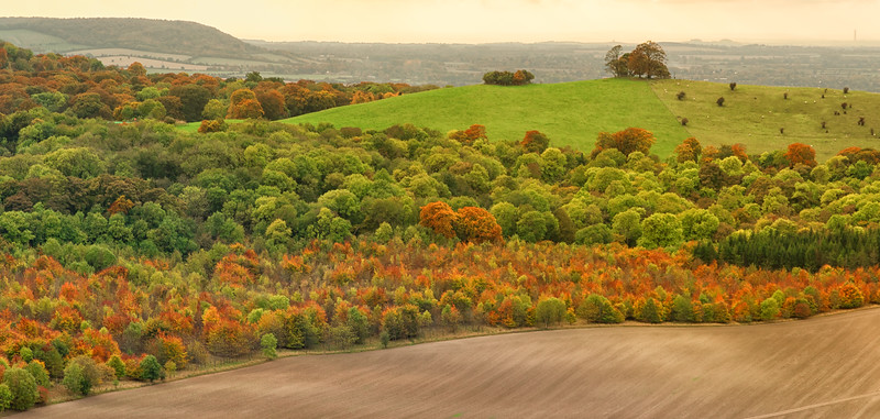 Autumnal view from Coombe Hill, Chilterns