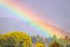 Big Magnificent Rainbow