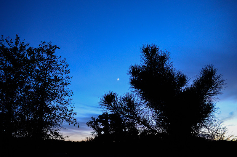 Crescent Moon Over Field at Dusk, Howell, NJ
