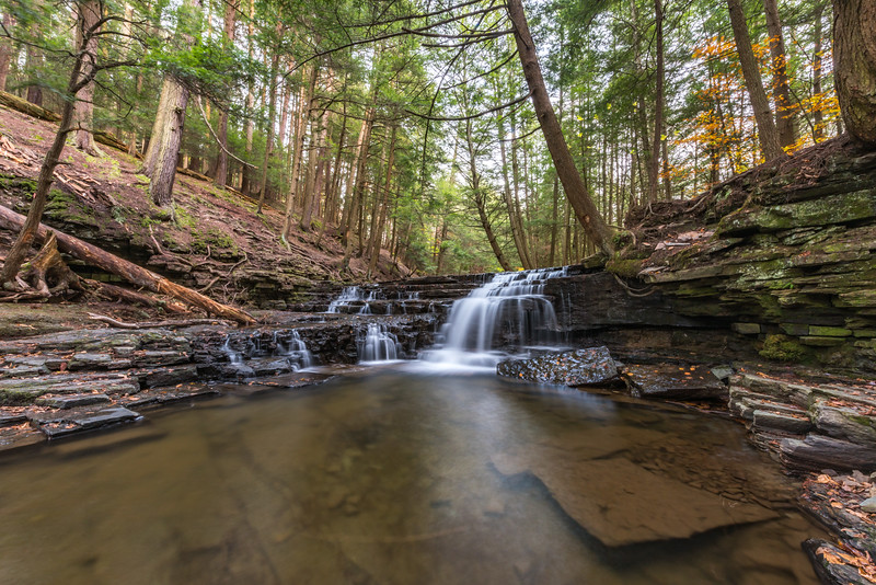 A Waterfall at Salt Springs State Park, PA 10/15/17